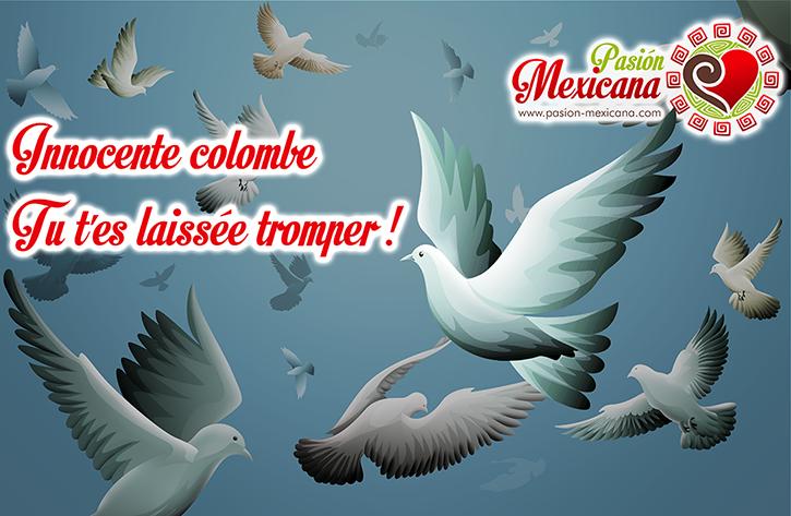 innocente-colombe-pasion-mexicana-dia-de-los-inocentes