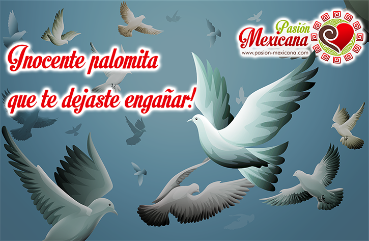 inocente-palomita-pasion-mexicana-dia-de-los-inocentes